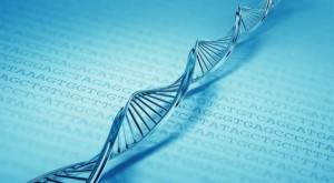 DNA_AGCT